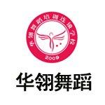 深圳酒吧领舞DS职业培训课程