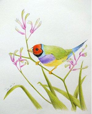 宁波高中美术兴趣拓展精品课程