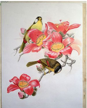 宁波高考美术专业提升课程