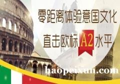 上海意大利语基础培训、享受个性化教学服务