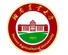 在职研究生硕士双证湖南农业大学招生 复试简单好录取