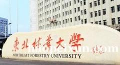 自考东北林业大学(独立本科)艺术设计专业具体报考要求