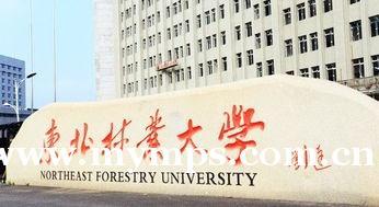 东北林业大学助学自考专本科怎么样?好拿证吗?